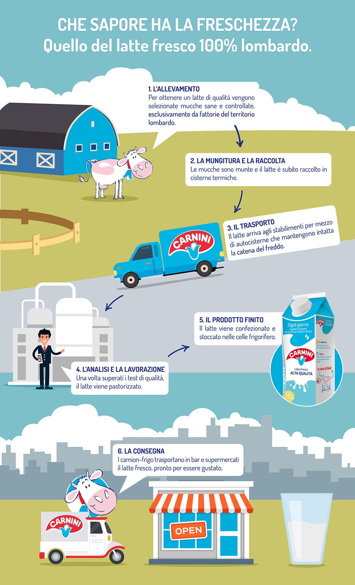 infografiche2