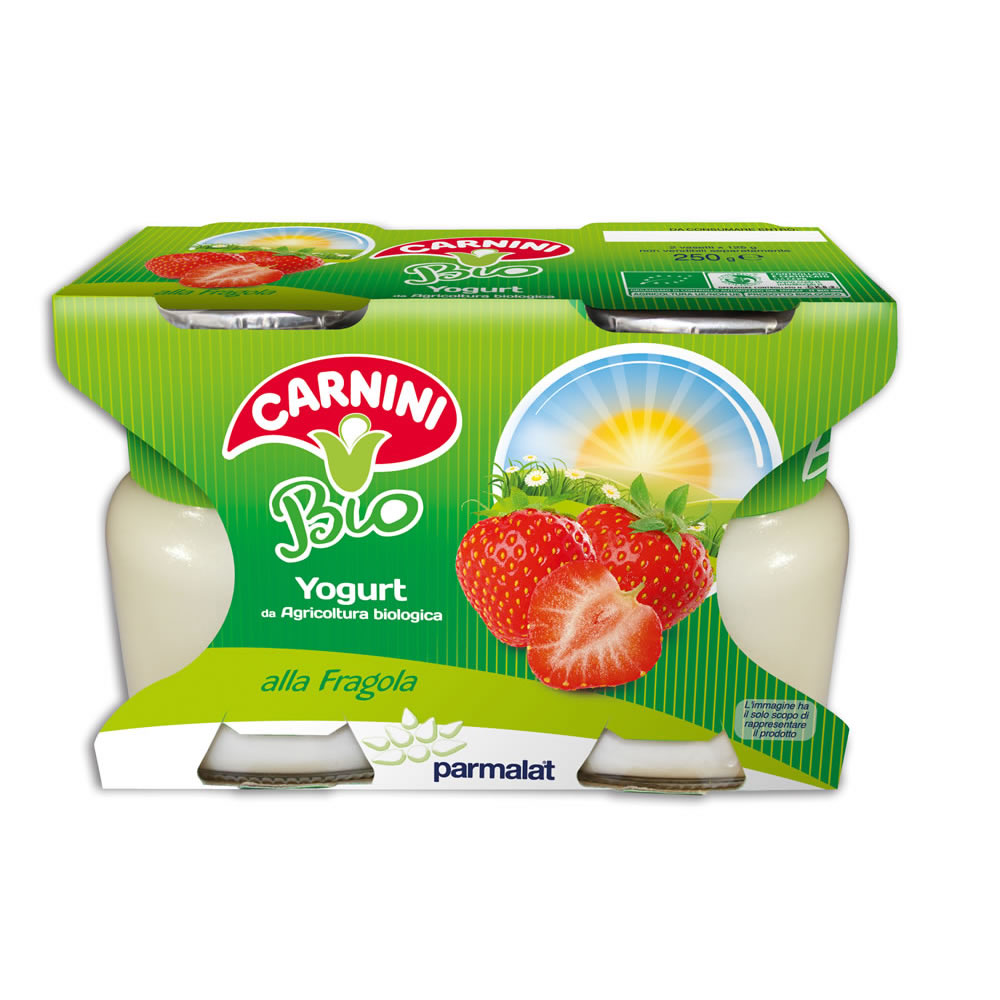Yogurt_BIO_fragola_250g